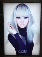 Shiseido salon