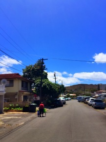 Elena Street with Punchbowl Volcano Mountain in the distance.