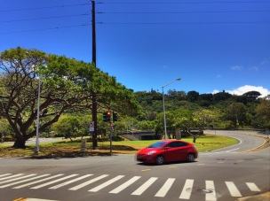 Entrance to the Pali Hwy