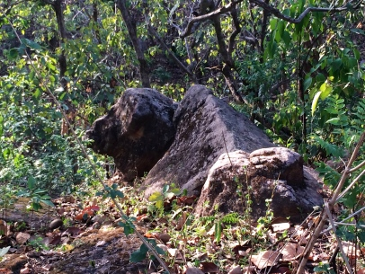 Its a rock not an oxen